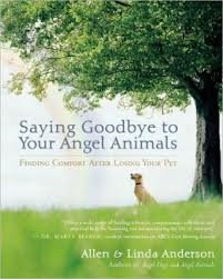 spiritual pet loss grief