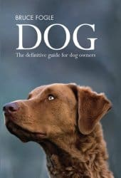 Symptoms of Food Allergies in Dogs