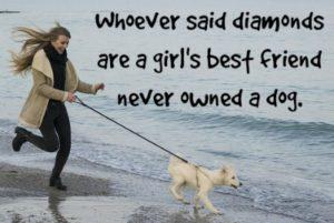 when-my-dog-died